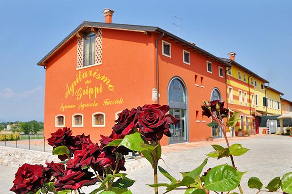 Immerso nei vigneti del Lago di Garda