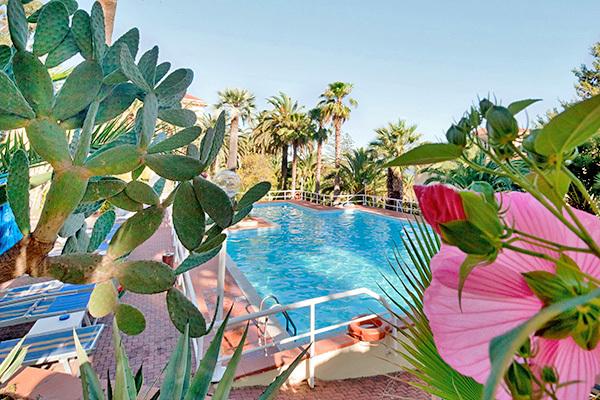 In un giardino di palme secolari
