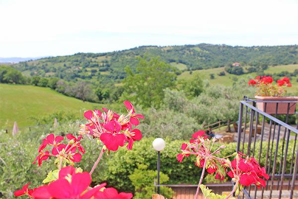 Ambiente tradizionale con vista sulle colline della Maremma