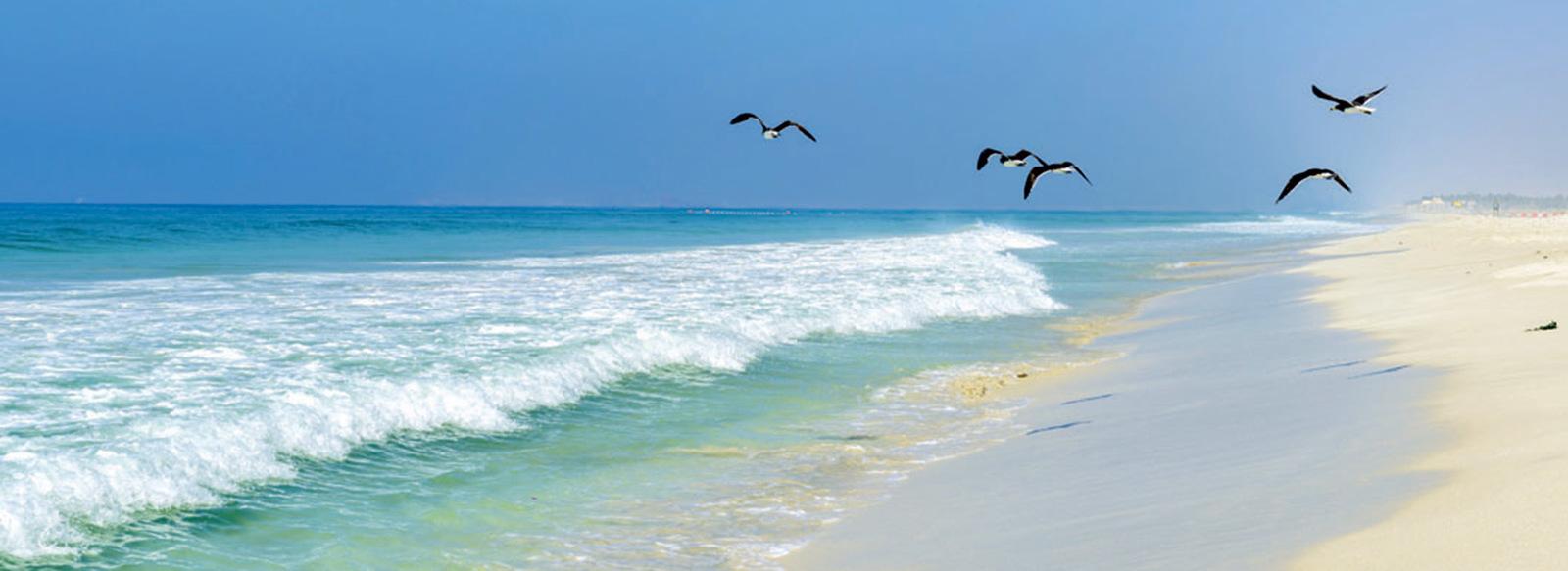 Tra deserto, montagne e spiagge dell'Oceano Indiano