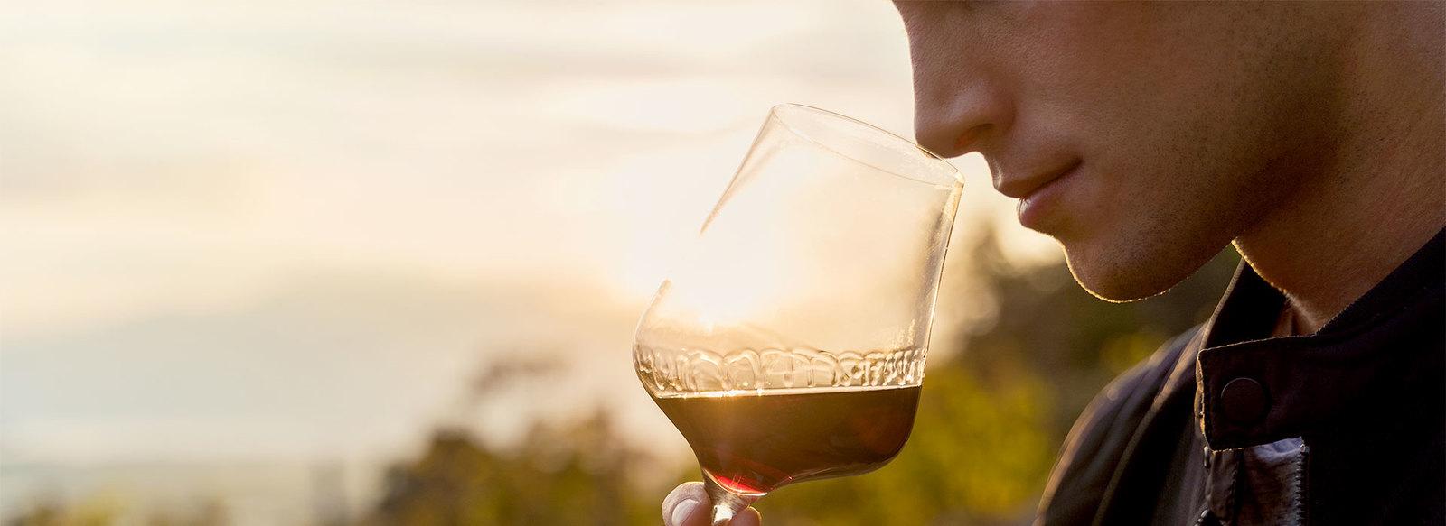 Wine tasting e bottiglia di vino omaggio