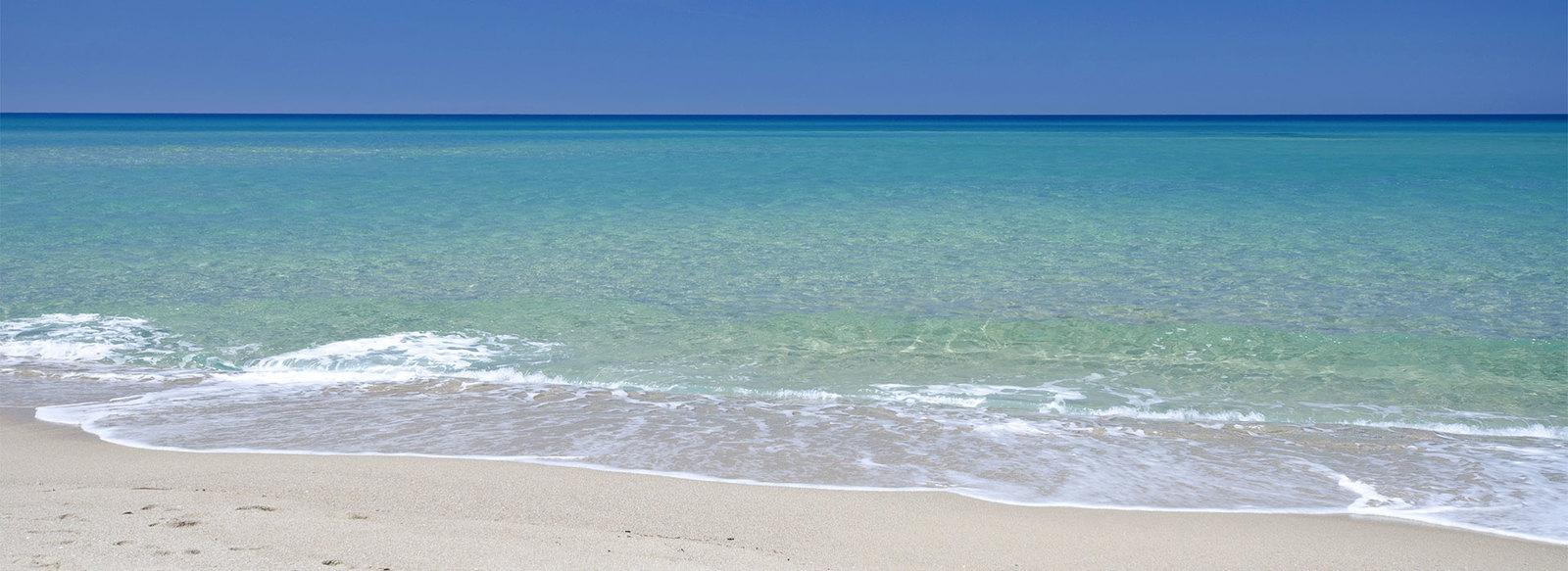 A 50 metri dalla spiaggia di sabbia