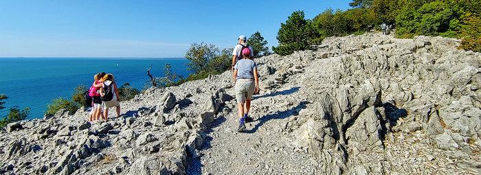 Incantevole baia nell'alto Adriatico