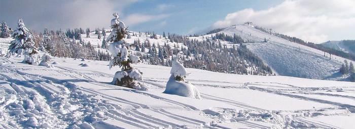 La magia del lago d'inverno