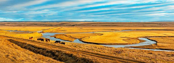 A cavallo tra Texas e New Mexico