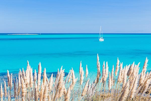 Parti in nave o in volo per le più belle spiagge