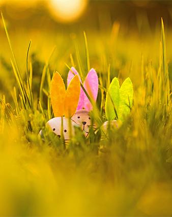 Approfitta di un break e goditi il primo sole di primavera