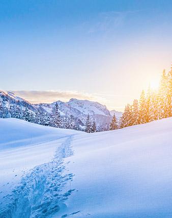 Le migliori proposte per la tua vacanza in montagna in tutta sicurezza